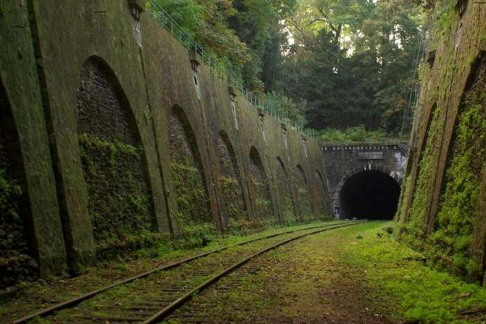 The abandoned railway tunnel of Chemin de fer de Petite Ceinture in France