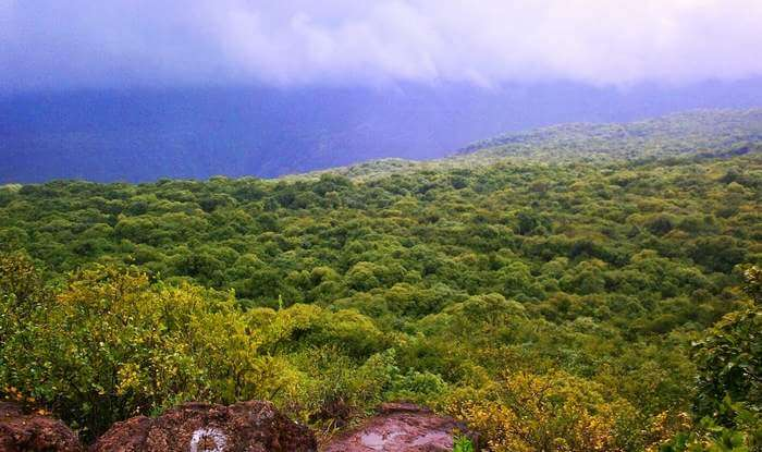 The colorful expanses of Connaught Peak which is one of the best tourist places in Mahabaleshwar