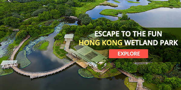 The Wet Land Park at Hong Kong, a major biodiversity centre of the world