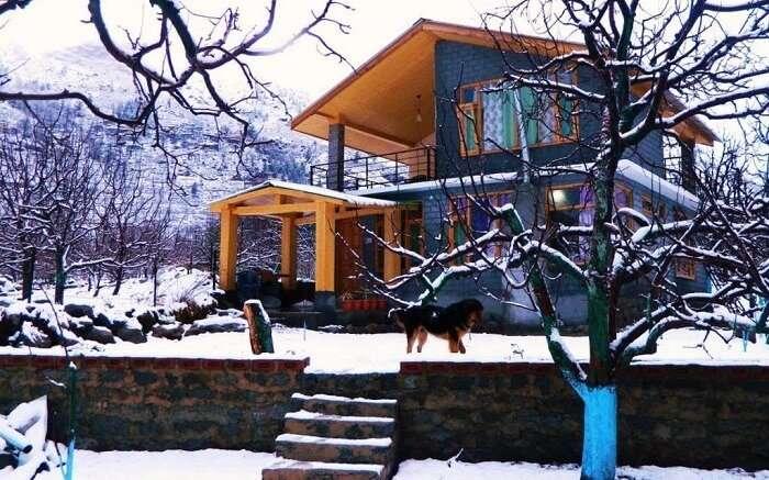 Idyllic Inn Manali in winters