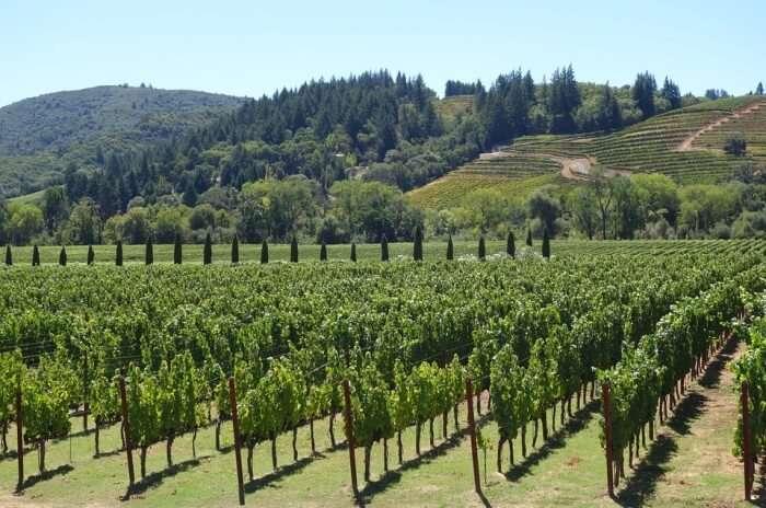 Karusa Winery