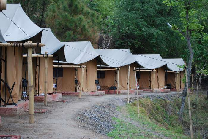 The camps in Mashobra Himachal Pradesh have redefined the concept of adventure campings