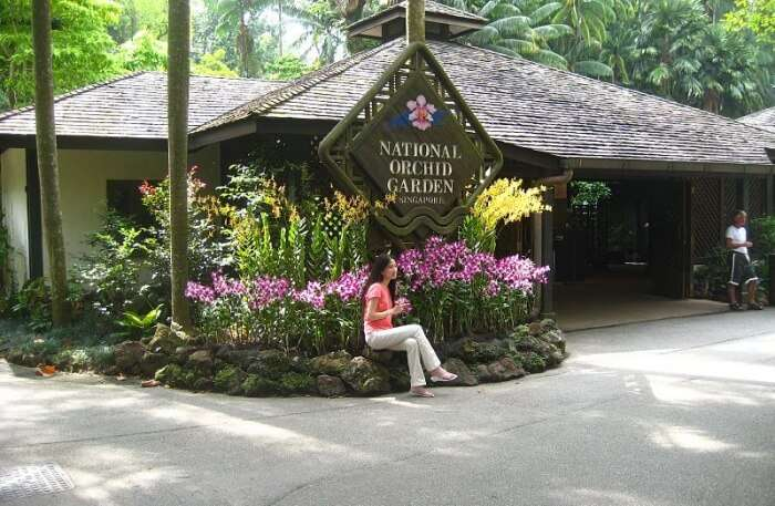 National Orchid Garden View