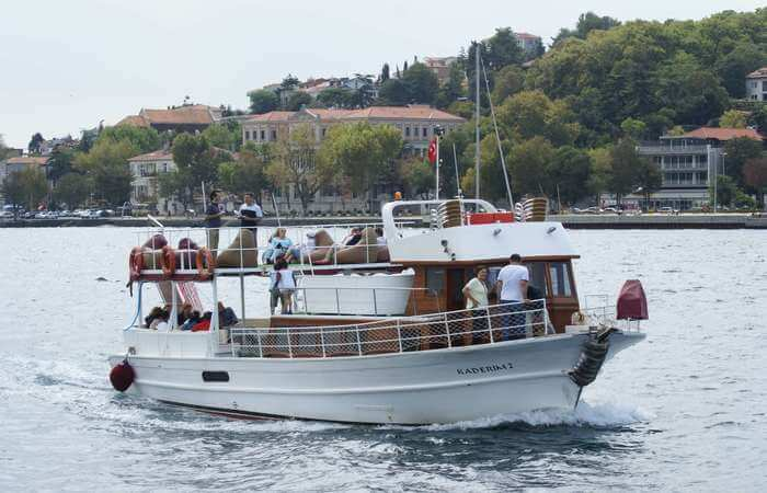 Bosphorus-Cruise