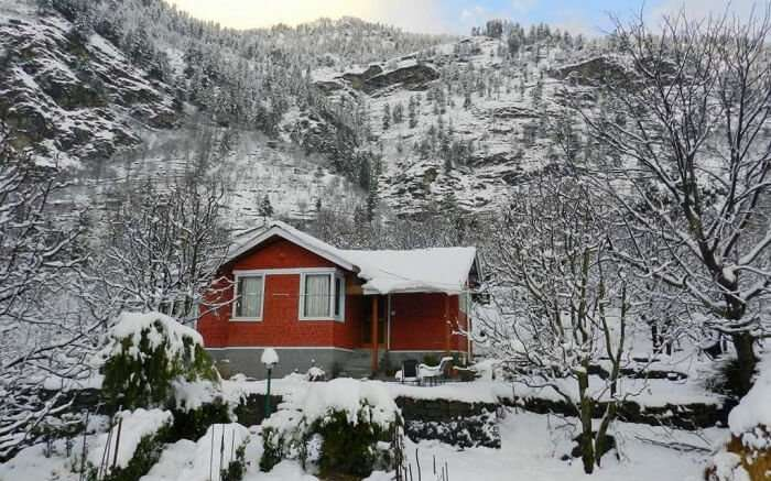 Treehouse Cottages in winter