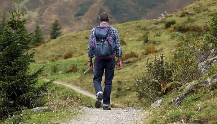Trekkking Path
