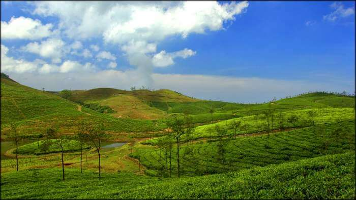The beautiful little hamlet of Vagamon is an offbeat place to visit in Kerala