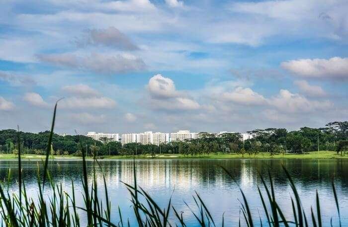 Yishun Dam View