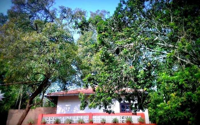 cottage for couples coorg