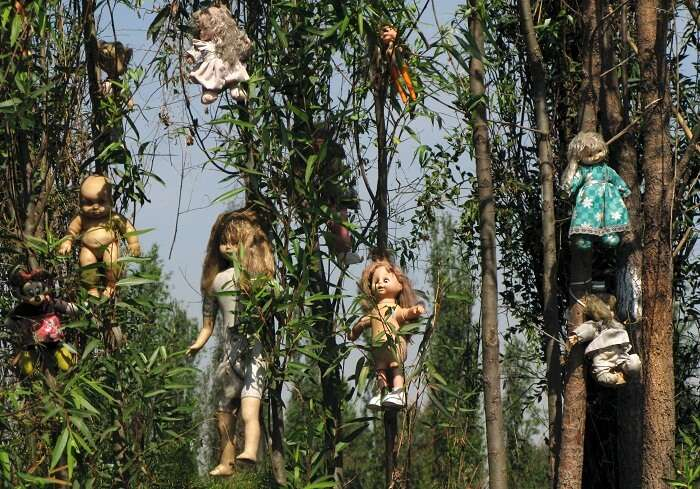 Dolls hanging from trees at the haunted Island of Dolls