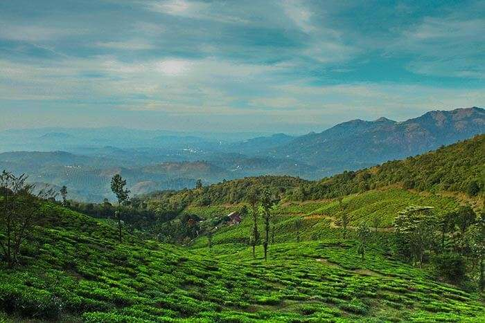 The spectacular view in wayanad