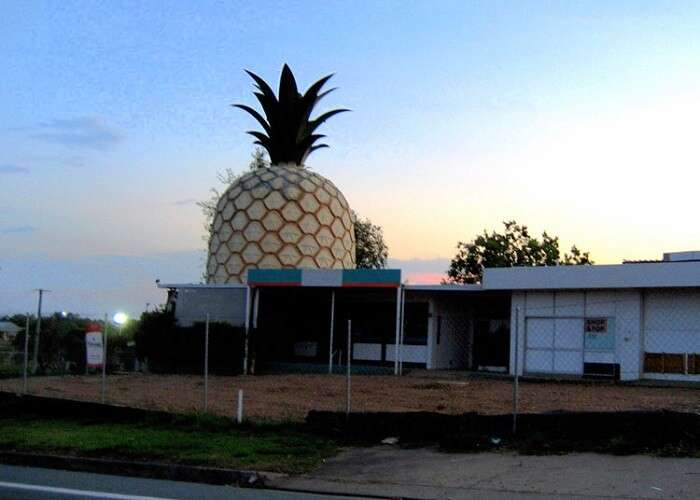 see the Big Pineapple in queensland