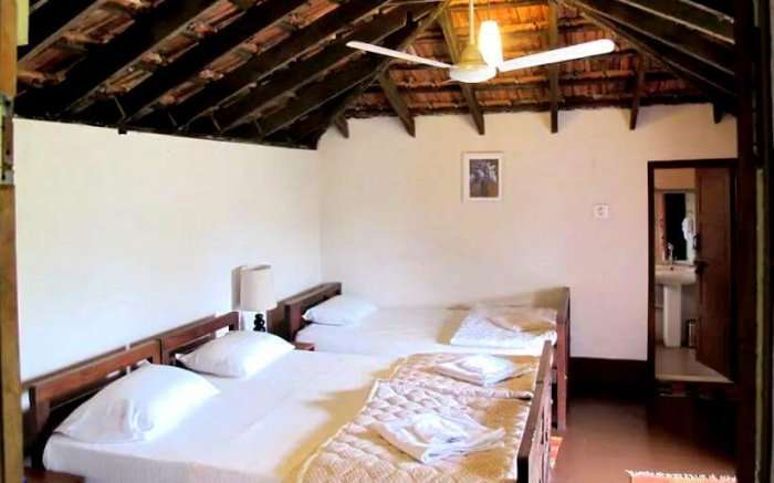 homestays for couples in coorg