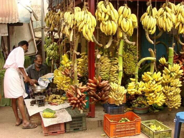 The variety of Bananas found in Kerala are unparalleled in size, shape and taste