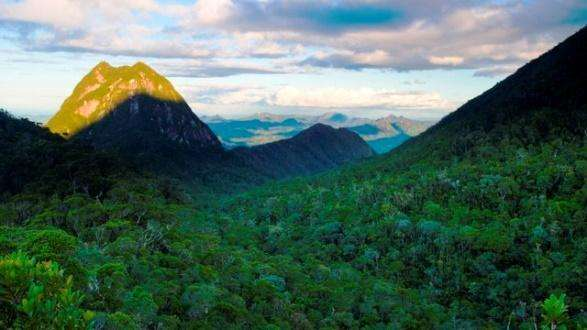 Masoala National Park covered with forest, Madagascar