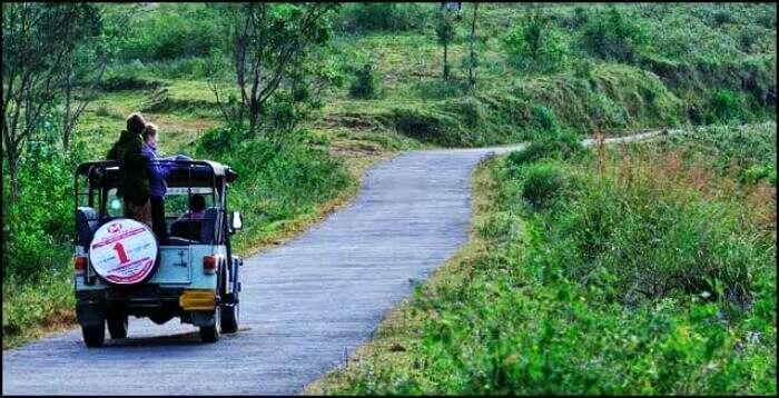 Periyar Jungle Jeep Ride covers the views of the lovely Idukki town, Mullaperiyar Dam of Kerala