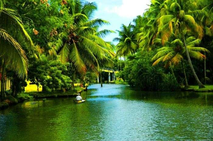 Backwater pathways of Alleppey - a top tourist place in Kerala