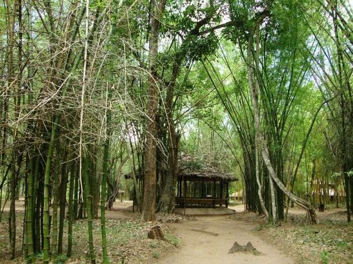 Treetop bamboo cottages at Cauvery Nisargadhama Island
