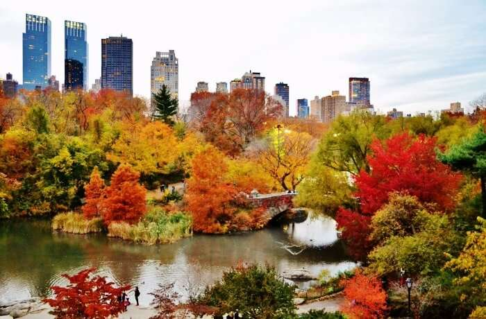 Experiencing Spring & Autumn at Central Park Autumn