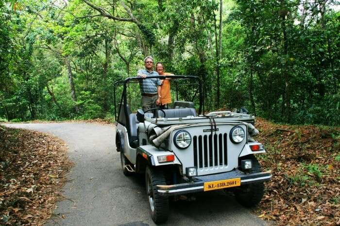 Jeep Safari for an ultimate wilderness retreat, Thekkady
