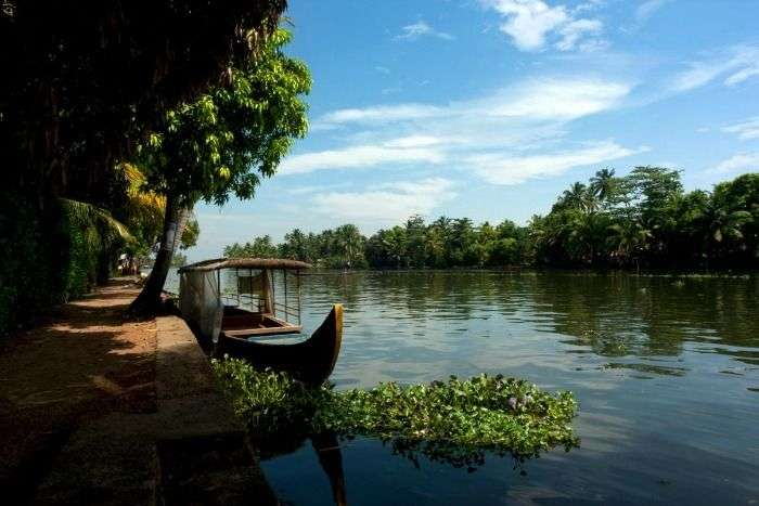 Enjoy the backwaters in Kumarakom, Kerala