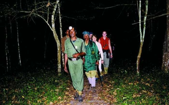 Night Patrolling in the Jungles of Kerala