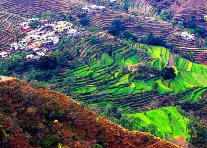 Lush green hills with pleasant weather and scenic views