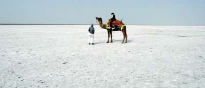 The Rann of Kutch - white barren land in Gujarat