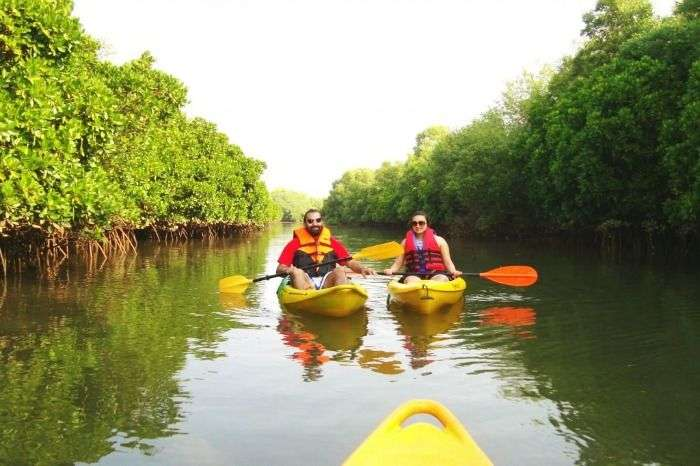 Canoeing and Kayaking on backwaters of Kerala