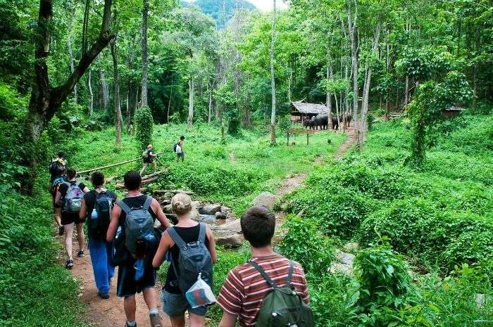 Trekking in Chiang Mai, for adventureous experience in Thailand