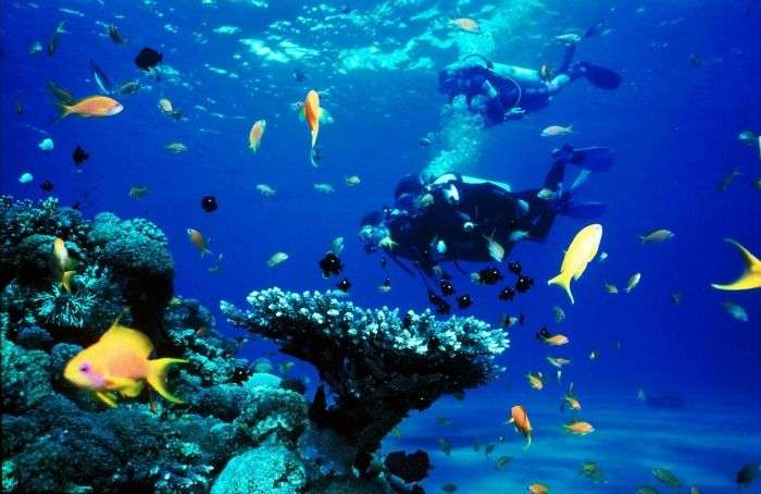 Scuba diving sites in Koh Samui