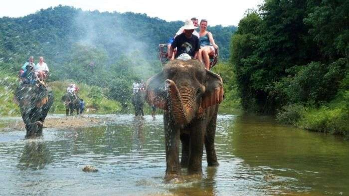 Enjoy Elephant Safari at Mount Harriet, Port Blair