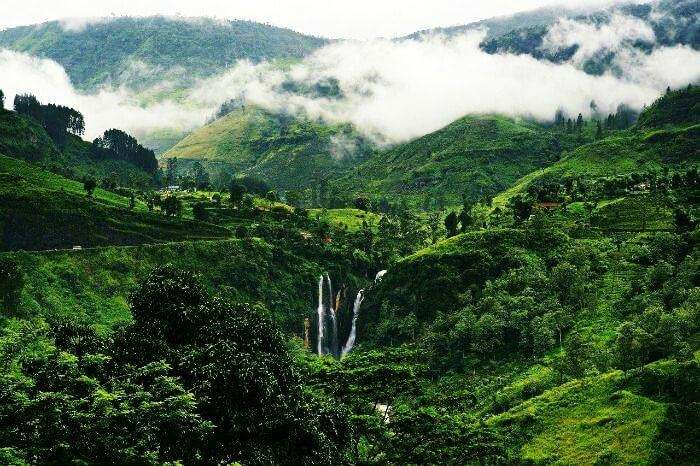The lush green hill station of Nuwara Eliya in Sri Lanka