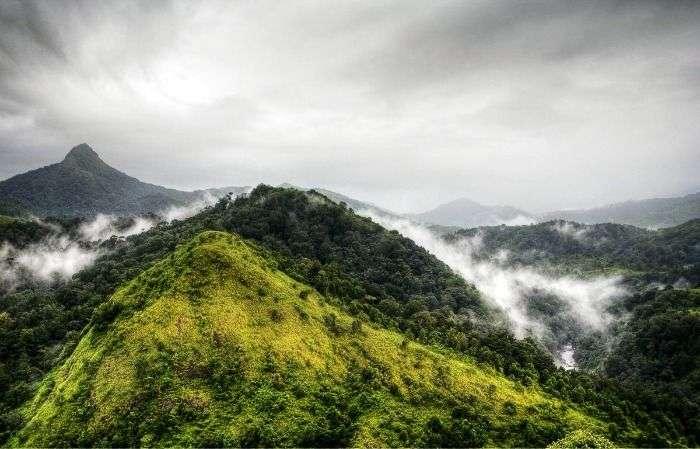 Natural charm at untamed silent valley, Kerala