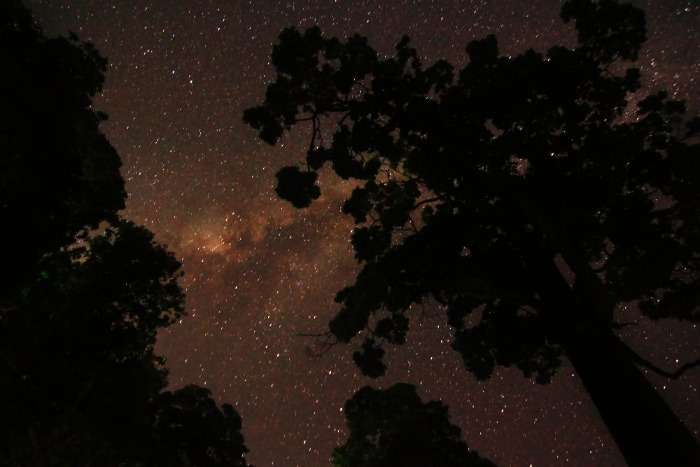 Glittering night sky in Coorg