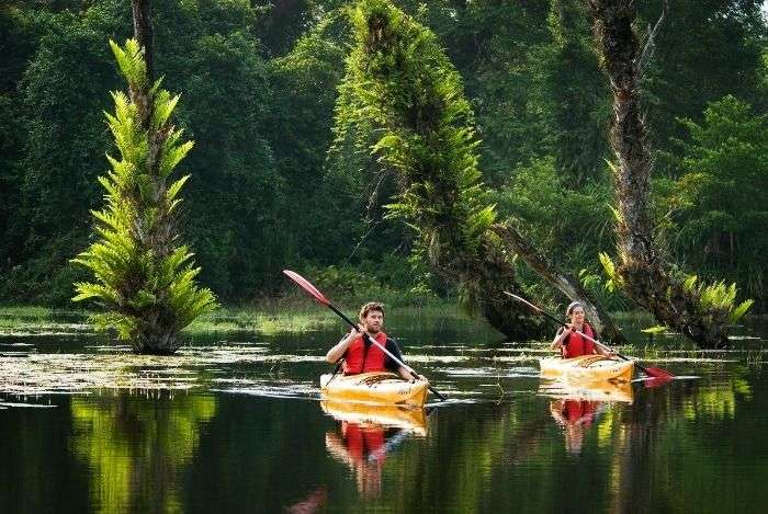 Enjoy Kayaking through Kerala Backwaters