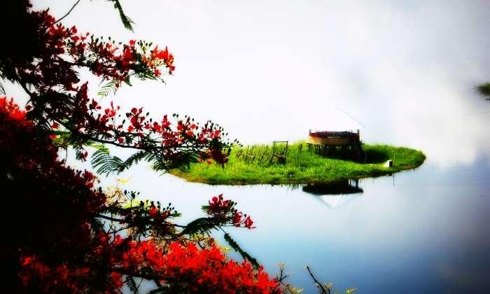 Floating islands in Loktak lake, Manipur