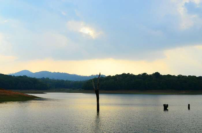 Surreal Periyar Lake at Periyar Wildlife Sanctuary