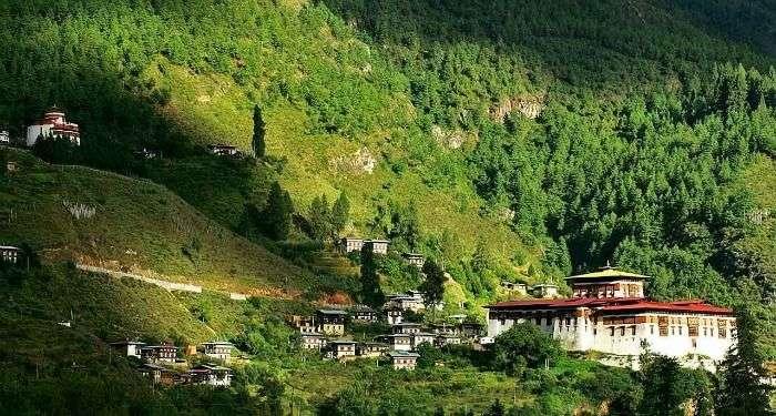 Zuri Dzong TrekKing Trail