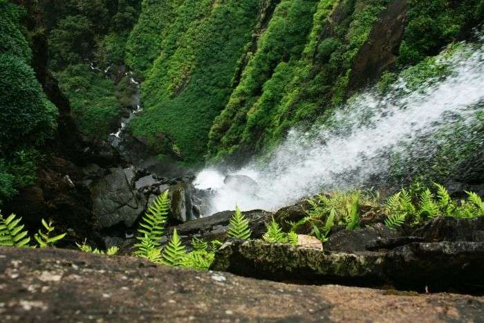 Agumbe is the Cherrapunji of South India