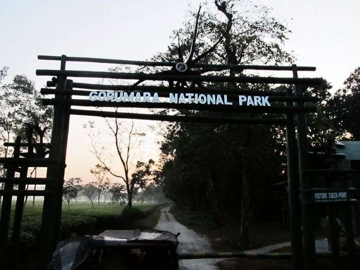 Gorumara National Park in Chalsa