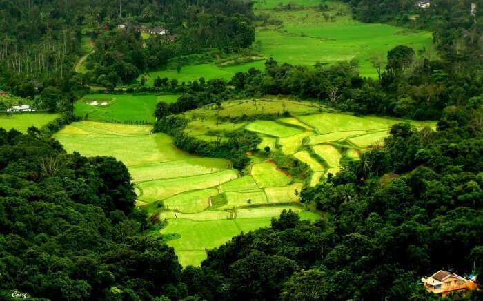 Lose yourself in the beauty of Coorg
