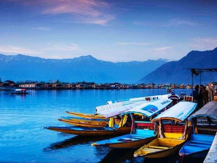 Shikaras in Dal Lake in Srinagar