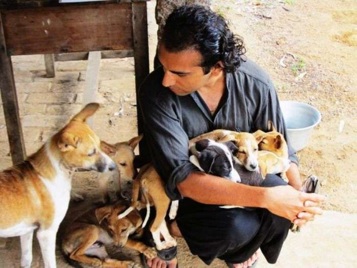 A man feeding stray dogs in Delhi