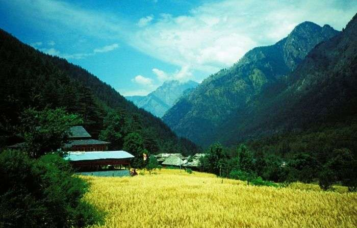 Explore the forested valley around Kasol Village