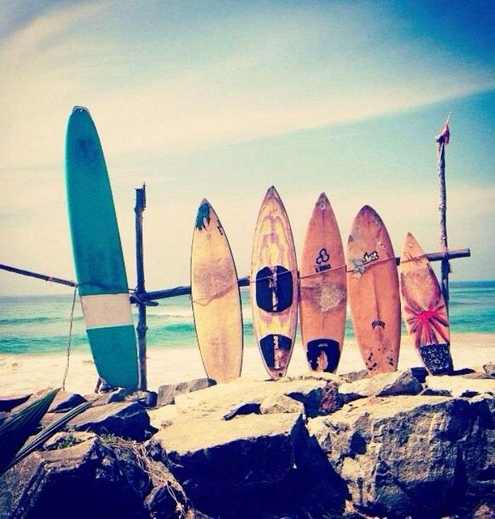 Surfing boards in Sri Lanka beach