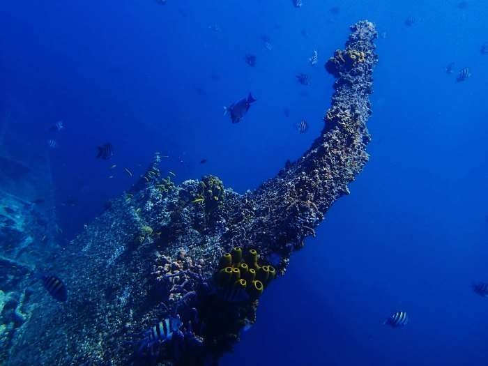 Antilla in the waters of Aruba