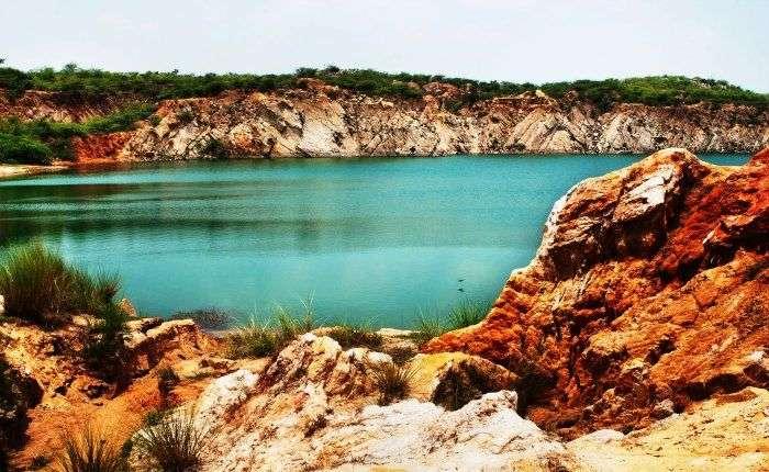 Bhardwaj Lake at Asola Bhatti Wildlife Sanctuary
