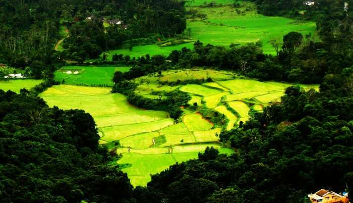 Coorg is one of the most pleasant and refreshing hill stations near Bangalore