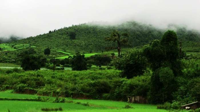 Beautiful valleys, coffee gardens, pine jungles and lots of scenic beauty
